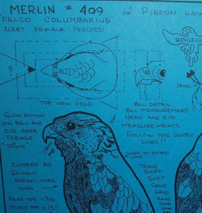 Merlin, Standing, Life