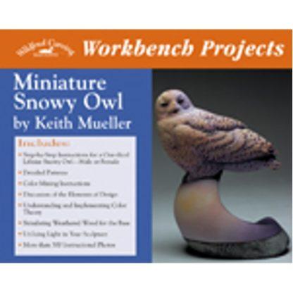 Workbench Projects: Miniature Snowy Owl