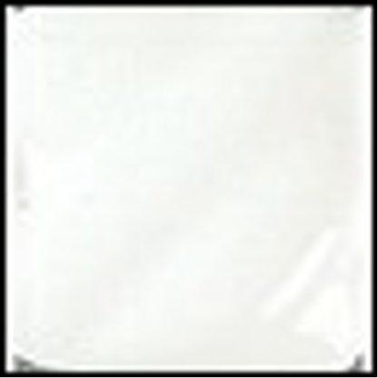 Gloss (LG) Glazes - LG-10 Clear Transparent [TP], 1 Gal. Liquid