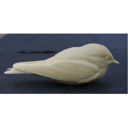 Swallow, Barn, baby birds - by R. Martin study cast