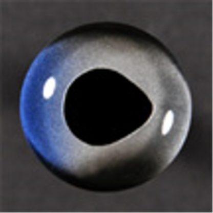 Fish Eyes, Sailfish 8mm