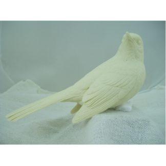 Mocking Bird Northern 2/3 size- Bob Guge study cast