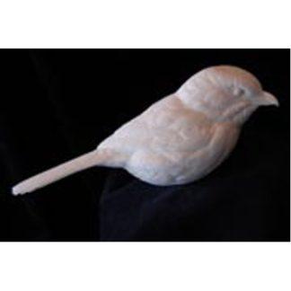 Shrike, Loggerhead- Bob Guge study cast