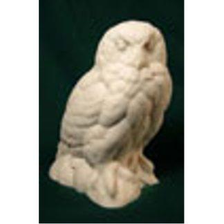 Owl, Snowy (1/3 scale) - Bob Guge study cast