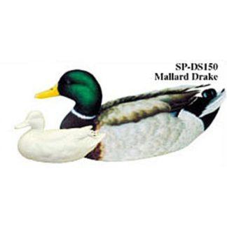 Mallard Drake, Study Cast