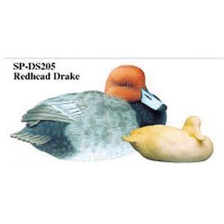 Redhead, Drake, Study Cast