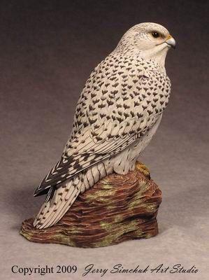 Falcon, Gyrfalcon Study Cast 1/3 size, Jerry Simchuk study cast