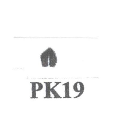 Pat Kennedy's Woodburning Snake Scale Tips PK - 19 RT