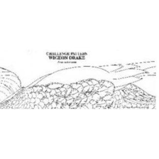Pat Godin, Hooded Merganser Drake Challenge Pattern (expanded cr