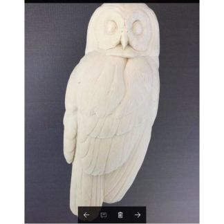 Owl, Barred, Al Jordan study cast