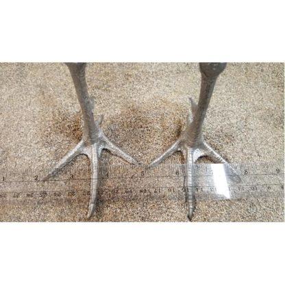 Cast Feet- Pheasant